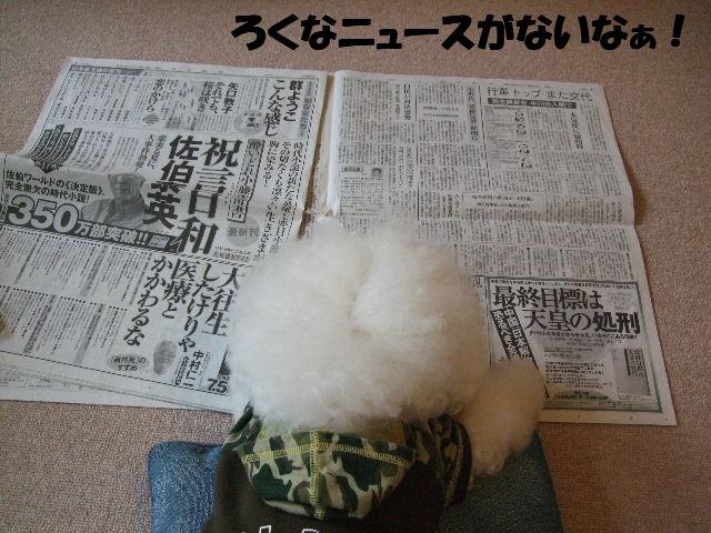 新聞を読むブンちゃん